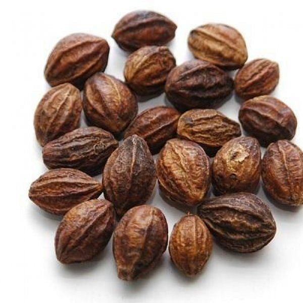 Kadukkai (Yellow myrobalan) provides youthfulness, cures consummation defects and reduces weight