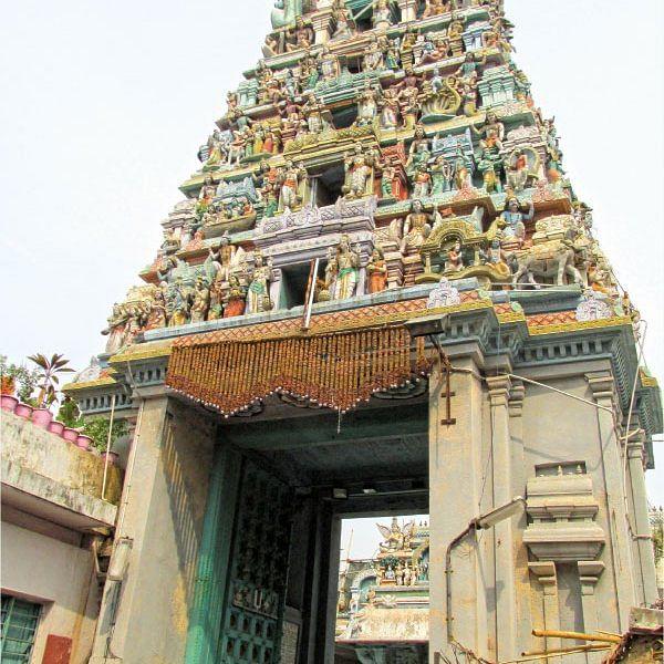 நம் ஊர் நம் கதைகள் - சென்னை-378,  நாட் அவுட்!
