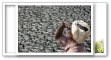 வலையோசை - மானிடன்
