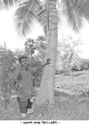 நசுங்கிப் போன கால்கள்...நம்பிக்'கை'வளர்க்கும் விவசாயம்!