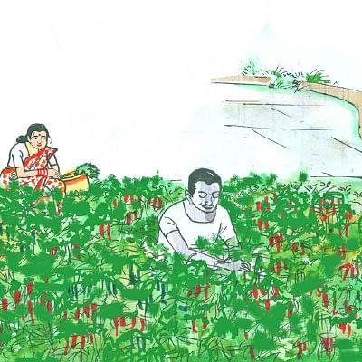 மரத்தடி மாநாடு: கேரளாவில் தொடரும்  எண்டோசல்ஃபான் சர்ச்சை!