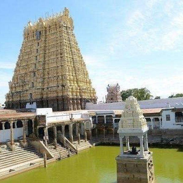 சங்கரநாராயணசாமி கோயில்  - ஆடித் தபசு