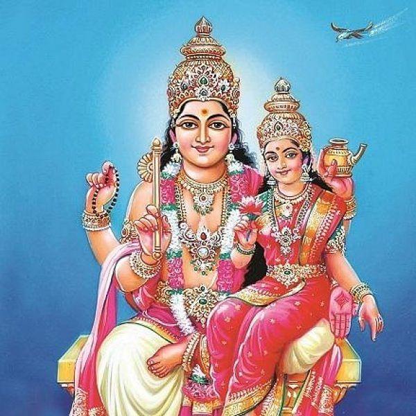 ஒருவரது ஜாதகத்தில் சுக்கிரன் வலுவாக இருந்தால் என்ன பலன் கிடைக்கும்? #Astrology