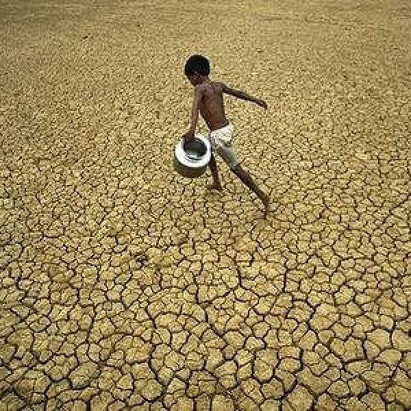 'சீர்கெட்ட காலநிலை மாற்றம்!' - இந்தியாவை எச்சரிக்கும் உலக வங்கி