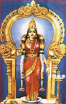 சந்தோஷம் அள்ளித் தரும் சங்கரன்கோவில்!