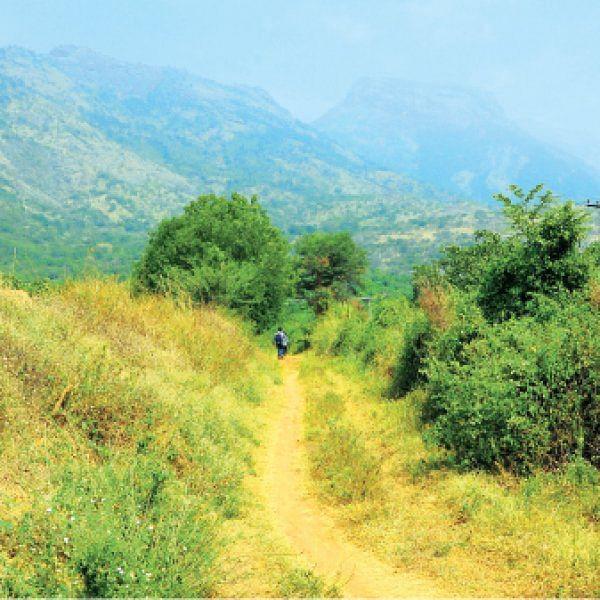 விகடன் லென்ஸ்: போடாத ரோட்டைக் காட்டி ரூ.12 கோடி கொள்ளை!