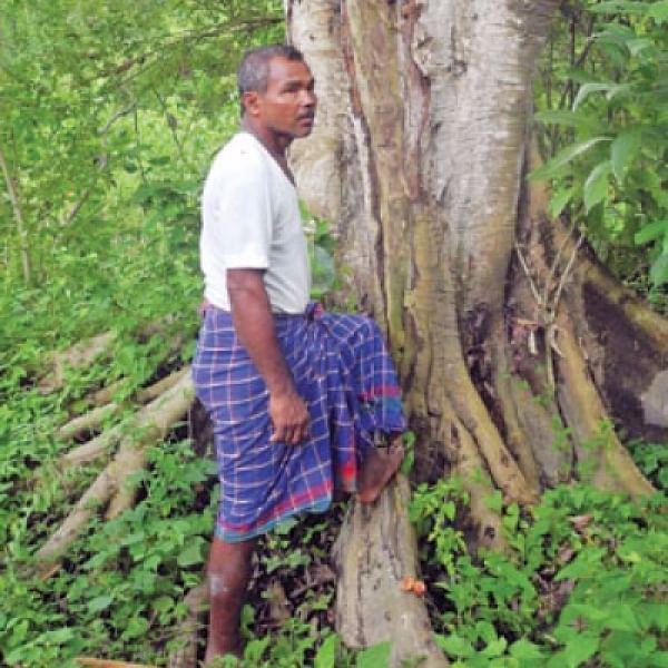 1 மனிதர்...36 ஆண்டுகள்...1360 ஏக்கர் காடு...சபாஷ் ஜாதவ் பேயங்..! #WorldForestDay