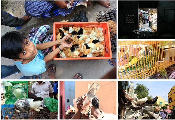 ஆதி சென்னையின் அடையாளங்களாக மிஞ்சியிருக்கும் சந்தைகள் !  #Chennai377 #Madrasday