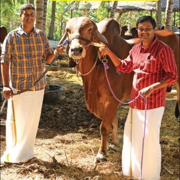 50,000 litres of Milk Annually… Rs 50 Lakhs Income... Graduates' Marvellous Milk Farm!