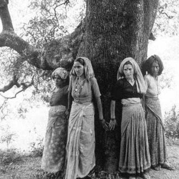 மரங்களை வெட்டாமல் தடுத்த சிப்கோ பெண்களின் புது வியூகம்!  #ChipkoMovement