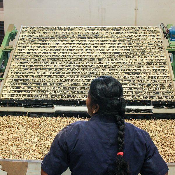 தூத்துக்குடி மாவட்டம் கோவில்பட்டியில் தயாராகும் தீப்பெட்டி.. #factoryvisit  படங்கள்: ப.கதிரவன்