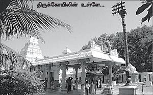 ஜாலி டே - தூத்துக்குடி