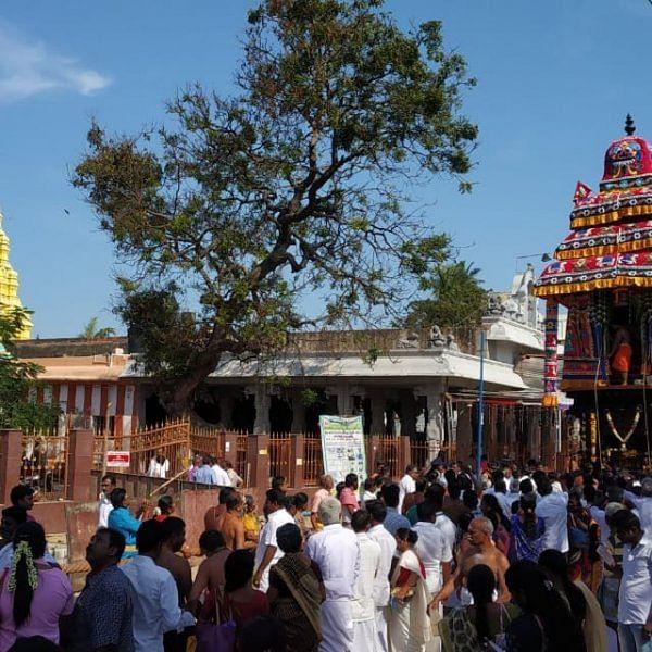 ராமேஸ்வரத்தில் மாசி மகா சிவராத்திரி -கோலாகலமாக நடைபெற்ற தேரோட்டத் திருவிழா