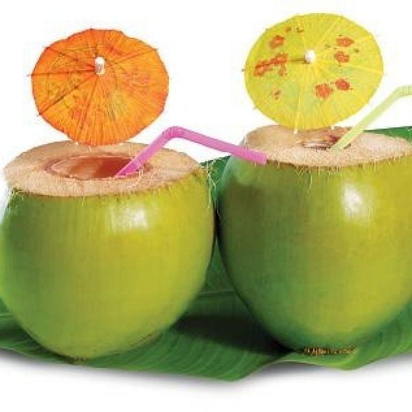 Can we drink tender coconut inempty stomach?
