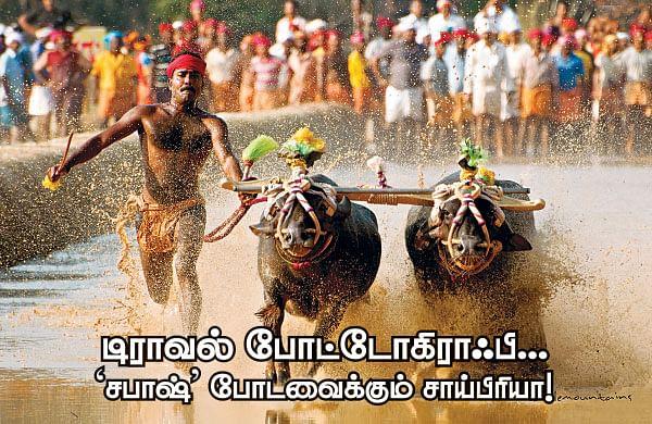 டிராவல் போட்டோகிராஃபி... ' சபாஷ்' போடவைக்கும் சாய்பிரியா!