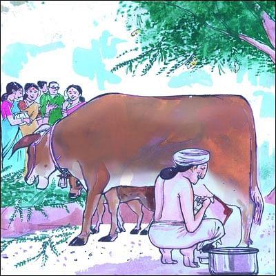 மண்புழு மன்னாரு: அகத்திக்கீரையும், நாட்டு மாடும் செய்த அற்புதம்!