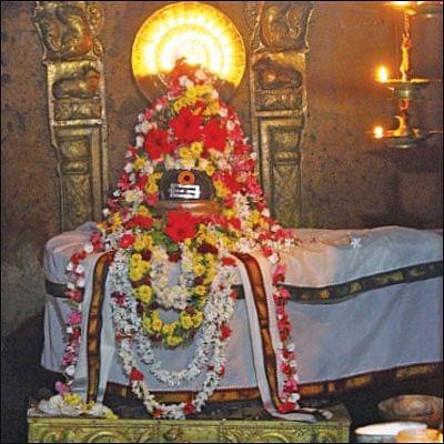 பிணிக்கு மருந்தாகும் பிரசாதத் திருநீறு!