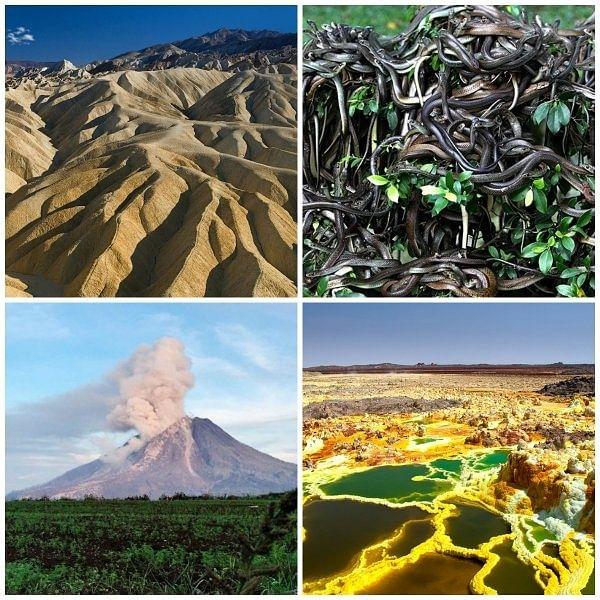 ஒவ்வொரு சதுர அடிக்கு 5 பாம்பு... 2500 மீட்டருக்கு தெறிக்கும் எரிமலை... உலகின் ஆபத்தான இடங்கள்! #DangerousPlaces