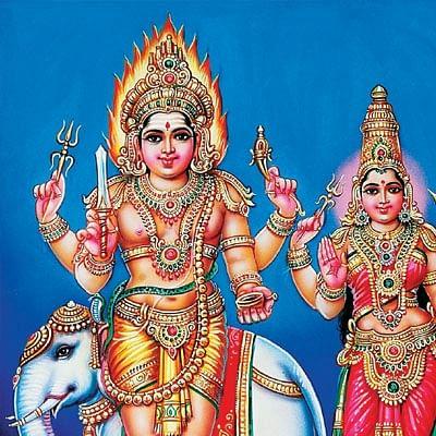 படியளக்கும் பரமனுக்கு அன்னாபிஷேகம்!