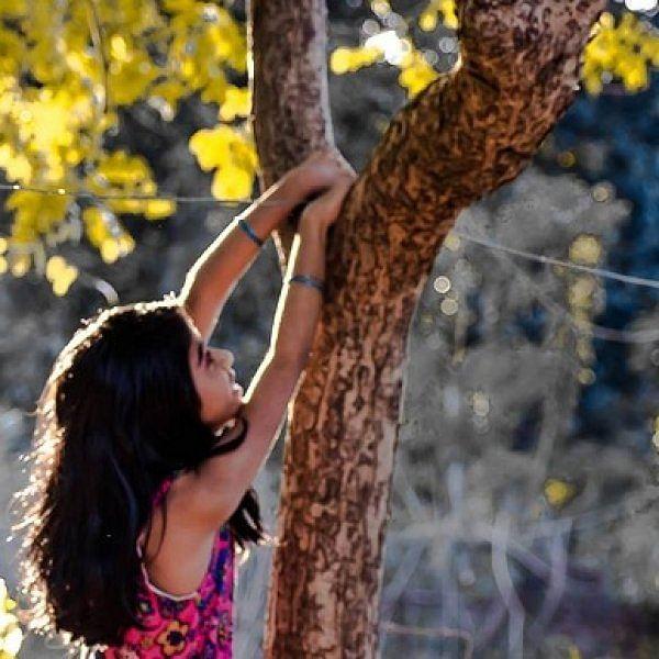 சுகன்ய சம்ருதி யோஜ்னா திட்டம் - இனி ரூ.250 டெபாசிட் செய்தால் போதும்