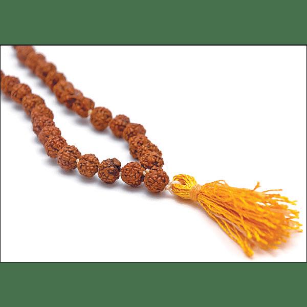 கேள்வி பதில் - ருத்ராட்ச மாலையை எப்போதும் அணியலாமா?