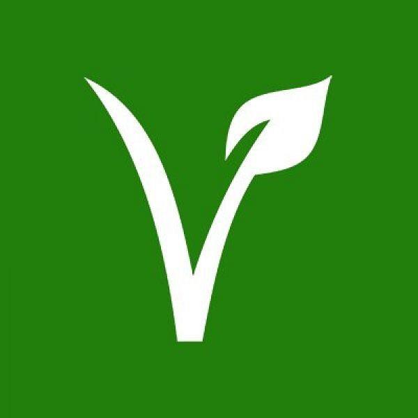 வீகன் உணவுமுறை பாதுகாப்பானதா... ப்ளஸ் மைனஸ் என்ன?#VeganDiet