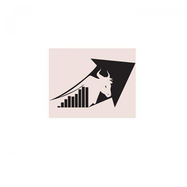 சென்னையில்... ஃபண்டமென்டல் அனாலிசிஸ் இரண்டு நாள் பங்குச் சந்தை பயிற்சி வகுப்பு