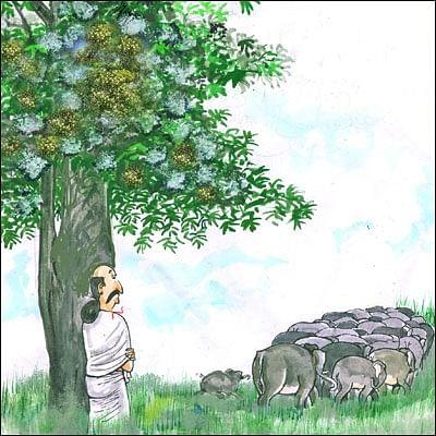 மண்புழு மன்னாரு: மதயானையும் மரமனிதனும்!
