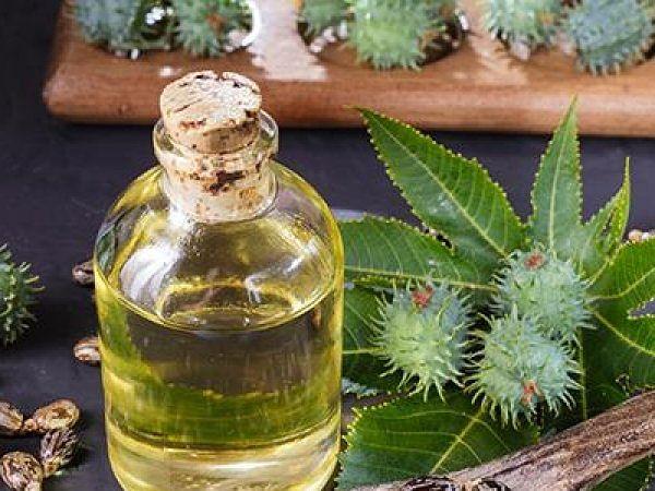 Multiple health uses of castor oil