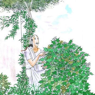 மண்புழு மன்னாரு: சுண்டைக்காய் கால் பணம்... சுமைக்கூலி முக்கால் பணத்தின் சூத்திரம்!