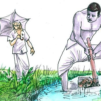 மரத்தடி மாநாடு: கோழிகளுக்கு வெள்ளைக்கழிச்சல்... கவனம்!