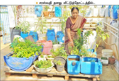 வீட்டுக்குள் விவசாயம் - 2