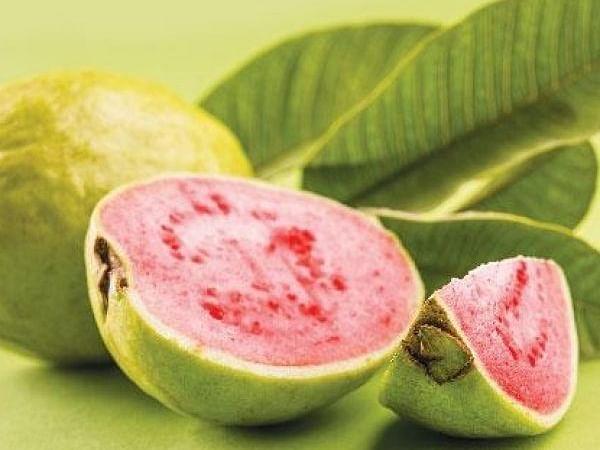 புற்றுநோய் தடுக்கும், எதிர்ப்புச் சக்தி தரும், பார்வைத்திறன் மேம்படுத்தும்... கொய்யா! #Guava