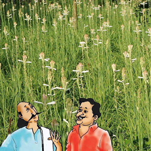 மண்புழு மன்னாரு: லட்ச ரூபாய் செலவில்...  சம்பங்கி தந்த அனுபவப் பாடம்!