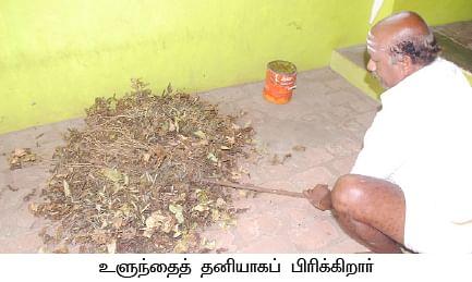 ஏக்கருக்கு 650 கிலோ... மானாவாரியில் மகிழவைத்த ஜீரோ பட்ஜெட் உளுந்து..!