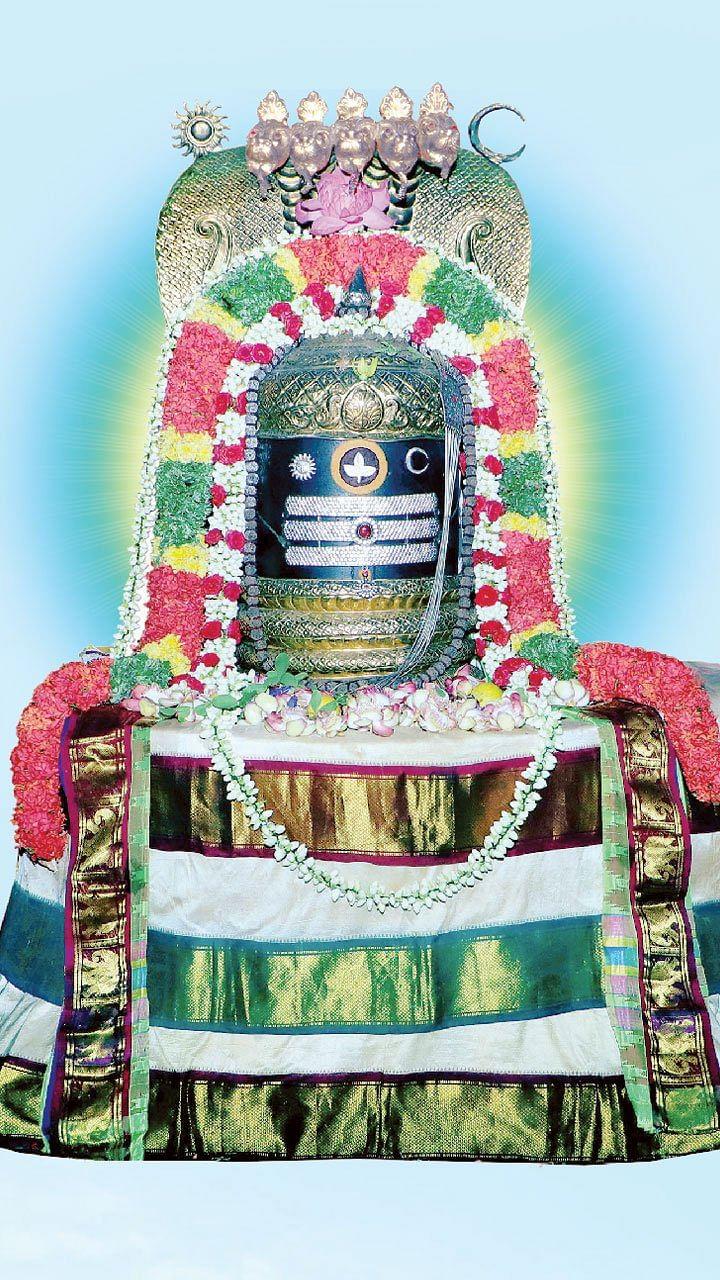 மண்ணாளும் ஈசனுக்கு மகா கும்பாபிஷேகம்!