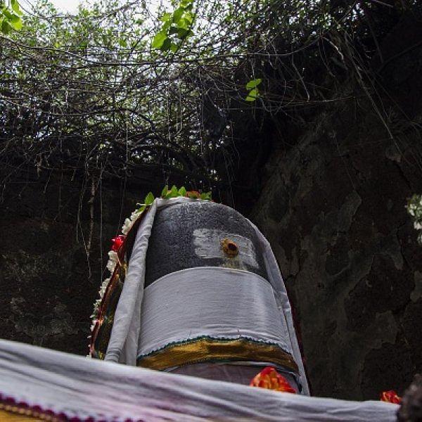 `தேடி வாடும் நெஞ்சமே...' சக்தி விகடனின் மகாசிவராத்திரி துதிப்பாடல் உங்களுக்காக...! #MahaShivratri