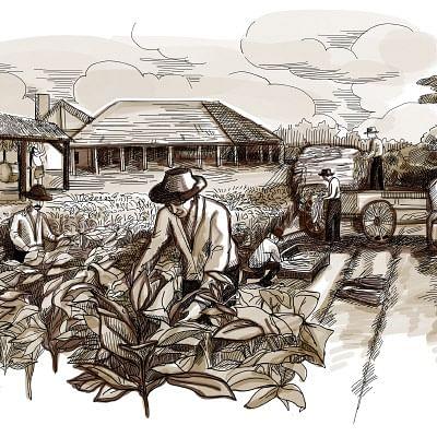 கதைகளின் கதை - புகையிலை விடு தூது - சு.வெங்கடேசன்