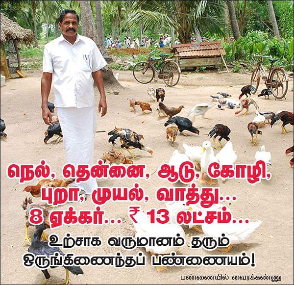நெல், தென்னை, ஆடு, கோழி, புறா, முயல், வாத்து... 8 ஏக்கர்...  13 லட்சம்...