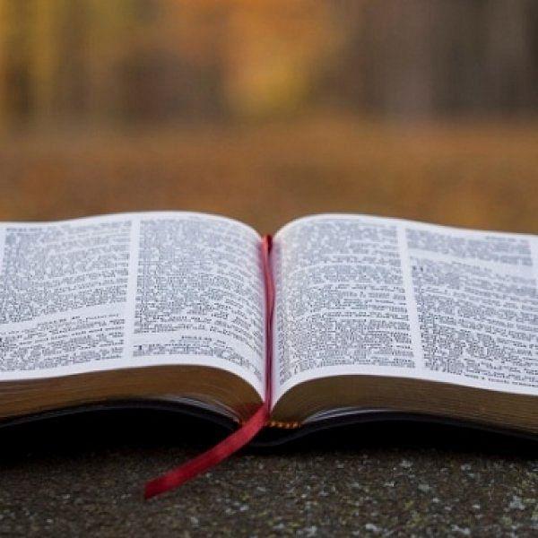 அவநம்பிக்கை கொல்லும்; நம்பிக்கைதான் வெல்லும்! ஒரு விளையாட்டு வீரரின் அனுபவம்! #Bible