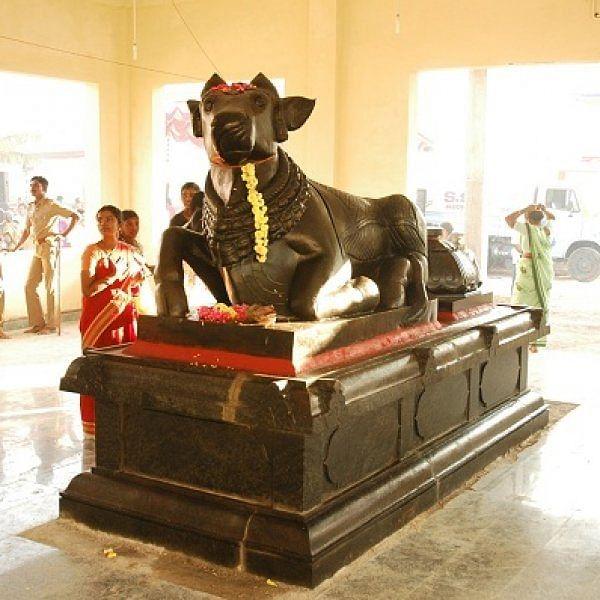 காதில்லாத நந்தி, பின்னங்கால் இல்லாத நந்தி - சிவாலயங்களில் பரவசப்படுத்தும் நந்தி வடிவங்கள்!