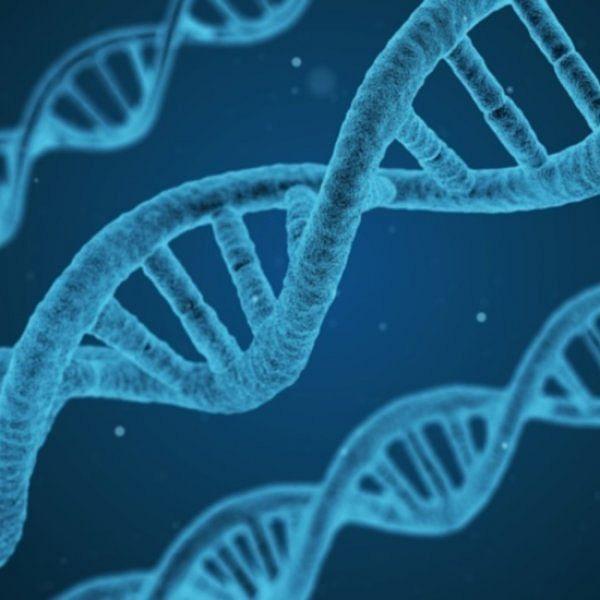 கருவிலுள்ள குழந்தைகளின் DNA-வை மாற்றியமைத்த விஞ்ஞானி... அதிர்ந்த சீனா! #WeekInScience