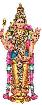 திருமண தோஷம் நீங்கும் !