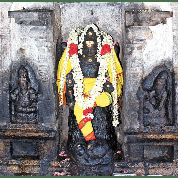 சக்தி தரிசனம் - மாங்கள்ய பலம் அருளும் குரு தட்சிணாமூர்த்தி