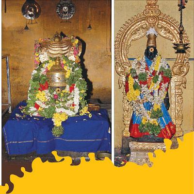 ராகு தோஷம் நீக்கும் செங்காணி!