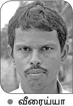 மானாவாரிக்கேற்ற குண்டு மிளகாய்...