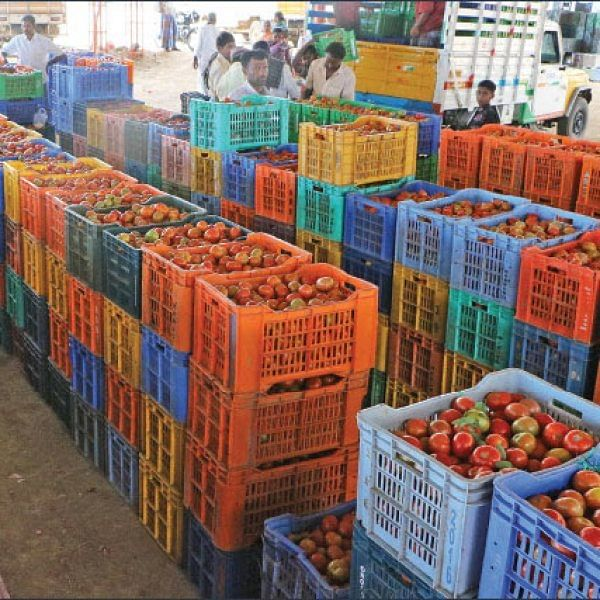 Agri Export for abundant income... Successful Strategies! Part 4
