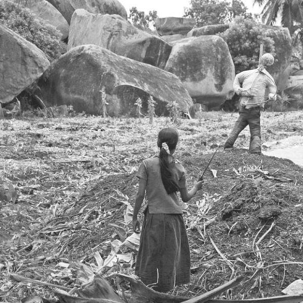 ஆண்பால் பெண்பால் அன்பால் - 35