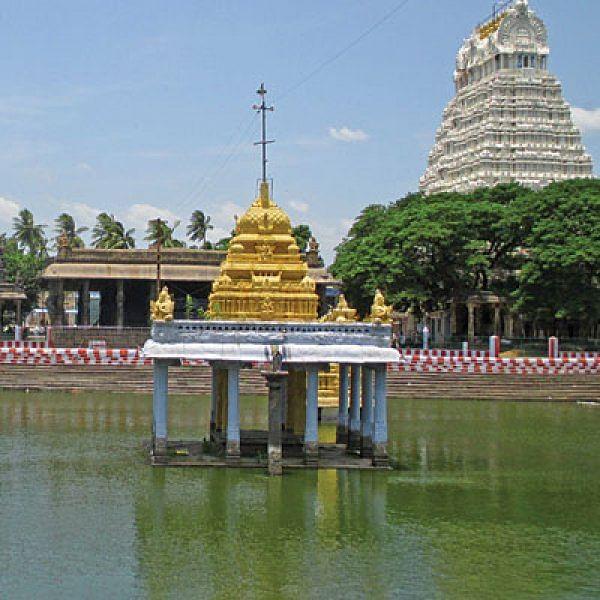 அனந்த சரஸ்