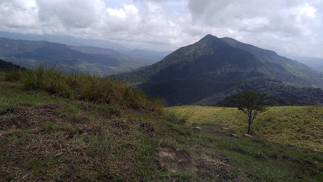 ஆனைமலை